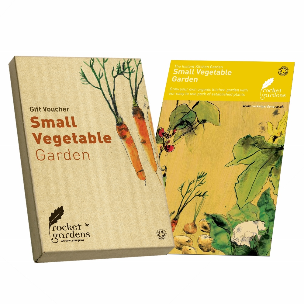 small vegetable garden gift voucher rocket gardens