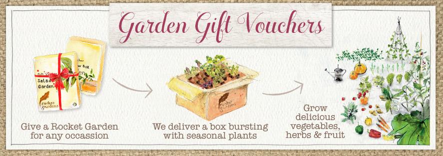 Gardening gift vouchers to buy online rocket gardens for Gardening gift vouchers