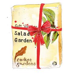 Rocket Garden Gift