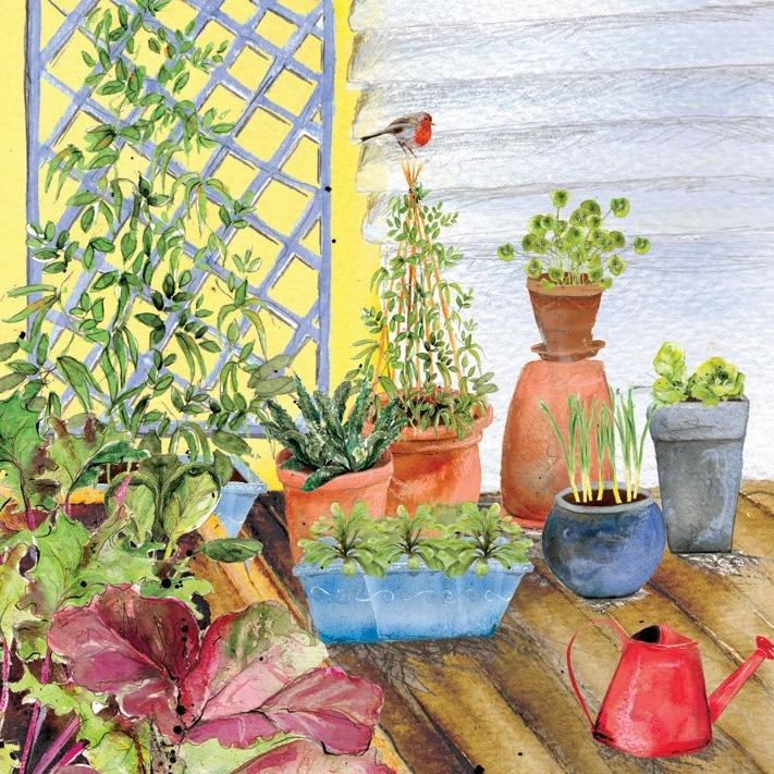 Autumn Winter Patio Container Garden