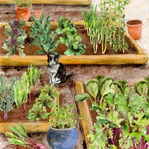 Autumn Winter Small Vegetable Garden