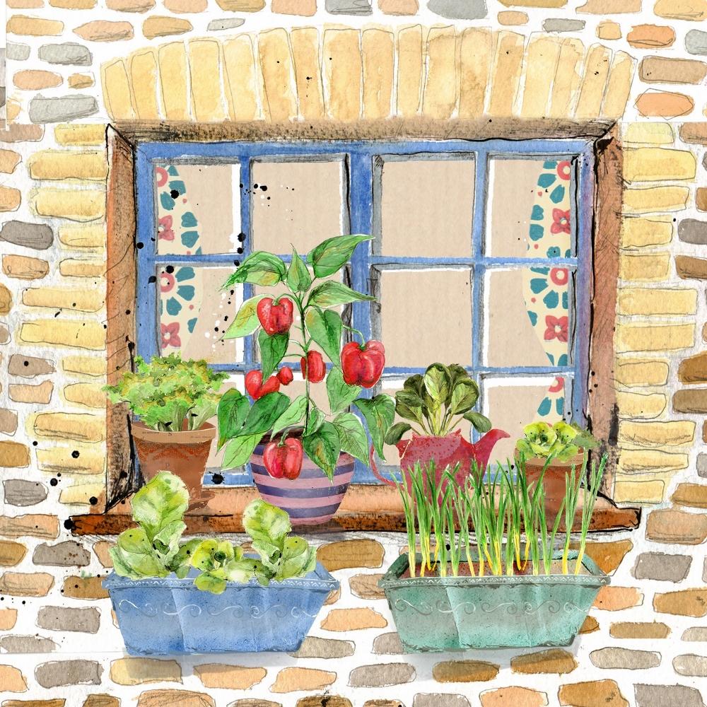 Autumn Winter Window Box Garden