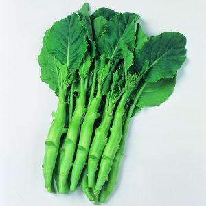 Kailaan Chinese Kale
