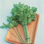 Kintsai Chinese Celery