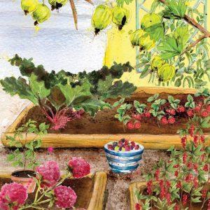 School Fruit Garden