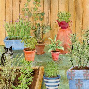 School Herb Garden