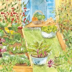 small veg garden