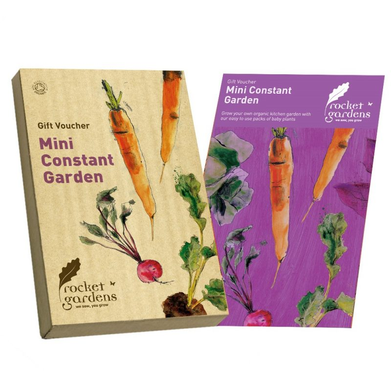 mini-constant-garden
