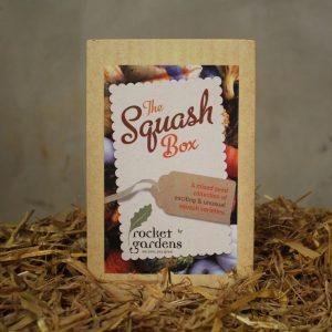 the-squash-box
