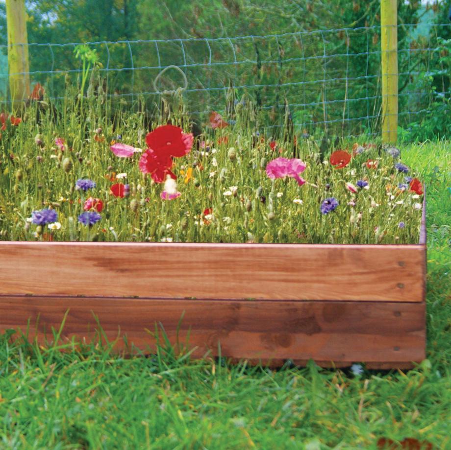 Wildflower Box