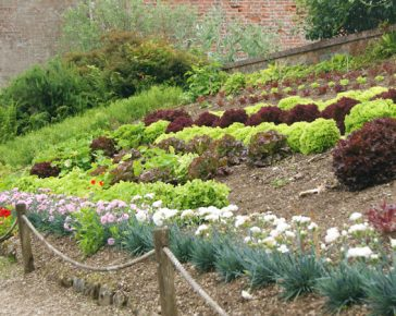 garden design at trengwainton