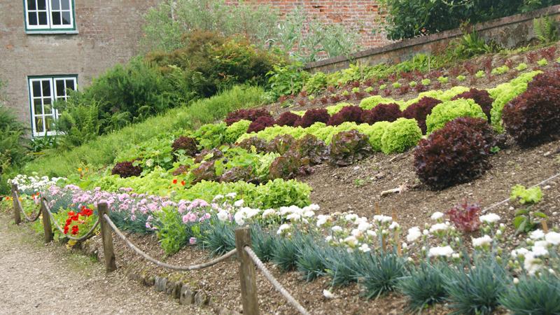 garden design at trengwainton