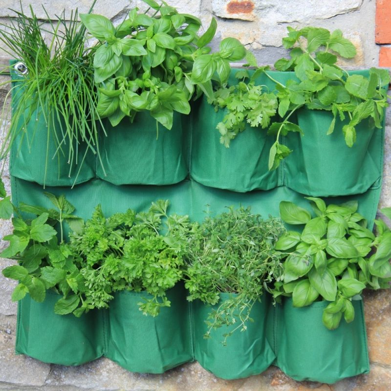 Herb Wall Planter 1