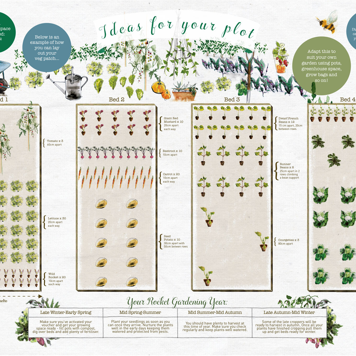 Small Year Round Veg Patch: Small Veg Patch Experience (Gift Voucher)