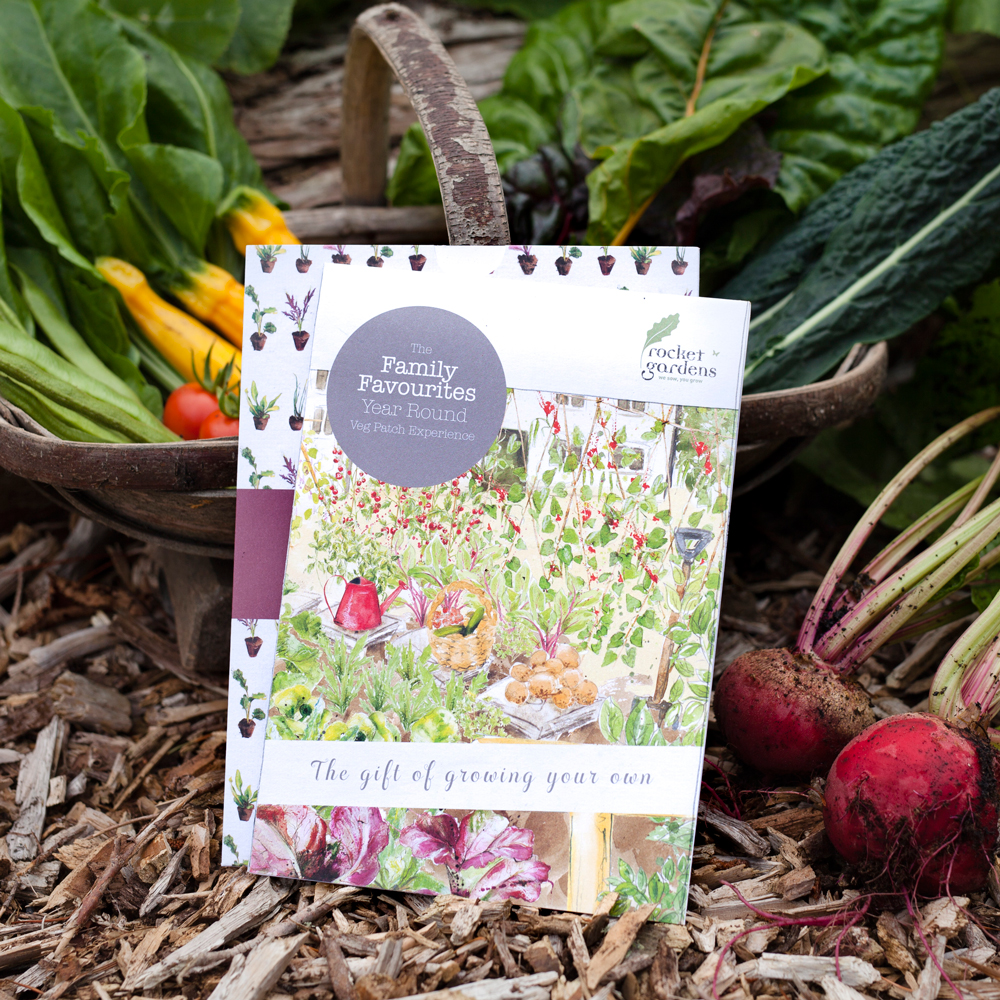 Family Favourites Year Round Veg Patch Experience (Gift Voucher)