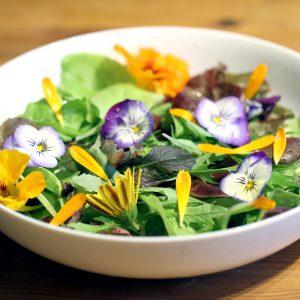 edible-flower-planter