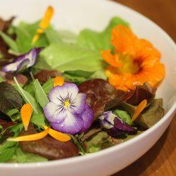 edible-flowers-harvested